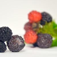 Framboise noir jewel. Gros fruit sucré.