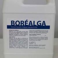 Bouteille de Boréalga, stimulant pour arbustes fruitiers.