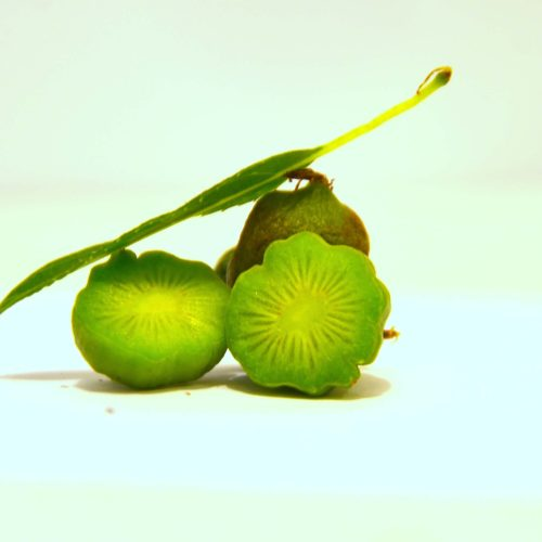 kiwi issai en fruit